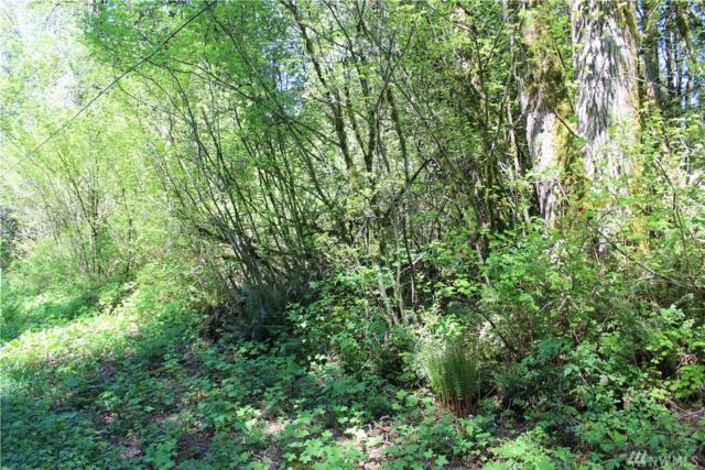 20-x N Lake Roesiger Rd, Snohomish, WA 98290 (#929070) :: Ben Kinney Real Estate Team
