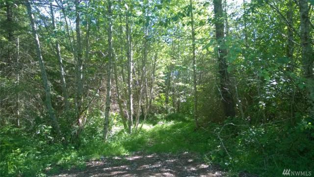 3 Hwy 503, Woodland, WA 98674 (#943375) :: Ben Kinney Real Estate Team