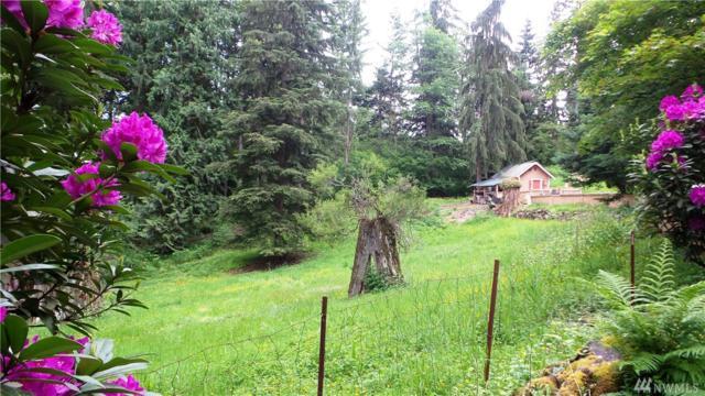 19729 Mountain View Rd NE, Duvall, WA 98019 (#948284) :: Ben Kinney Real Estate Team
