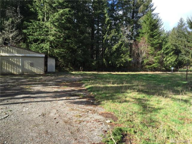 23 2nd St, Neilton, WA 98552 (#956558) :: Ben Kinney Real Estate Team