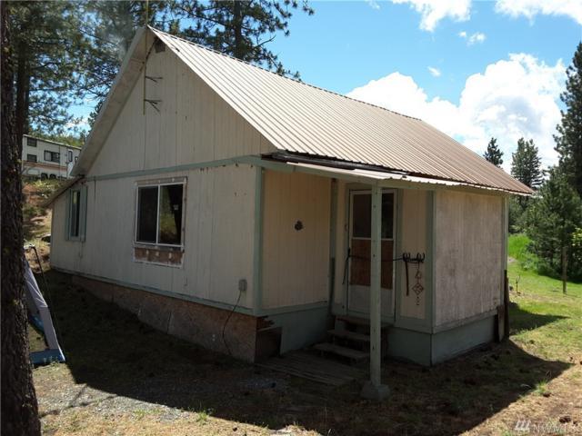 163 Madd Mountain Rd, Okanogan, WA 98840 (#970648) :: Ben Kinney Real Estate Team