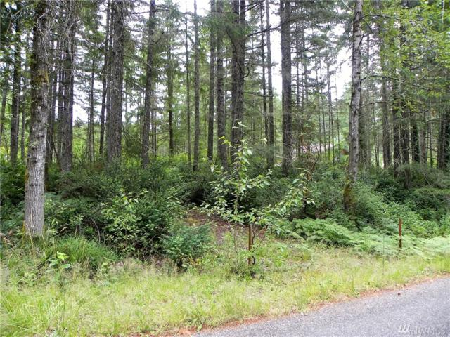 48-Lot NE Collins Lake Dr, Tahuya, WA 98588 (#971516) :: Crutcher Dennis - My Puget Sound Homes