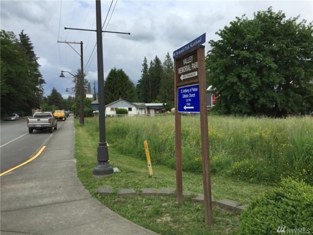 3900-xx Tolt Ave, Carnation, WA 98014 (#971976) :: Ben Kinney Real Estate Team