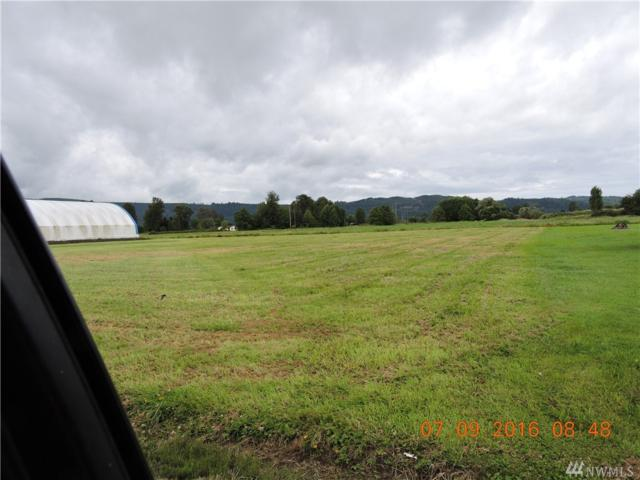 12 Hay Way, Cathlamet, WA 98612 (#972332) :: Ben Kinney Real Estate Team