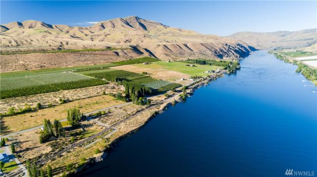 429 Stayman Flats Rd, Chelan, WA 98816 (#1005873) :: Real Estate Solutions Group