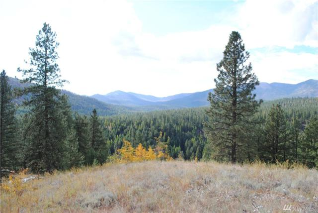 0 W Fork Rd, Conconully, WA 98819 (#1017222) :: Homes on the Sound