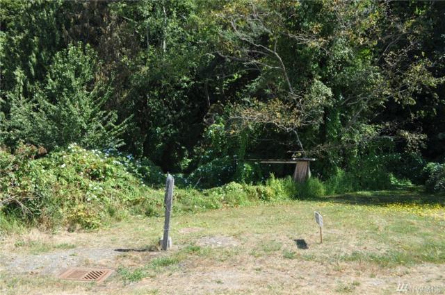 117-xx Tulare Wy, Marysville, WA 98271 (#1019021) :: Ben Kinney Real Estate Team