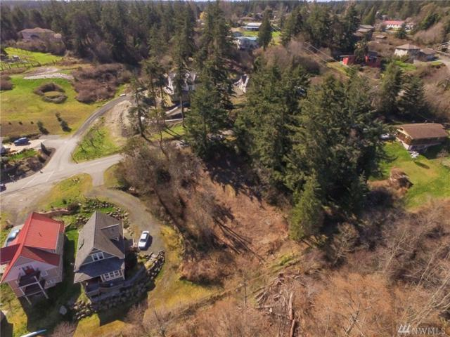 1042 Umatilla Ave, Port Townsend, WA 98368 (#1039545) :: Ben Kinney Real Estate Team
