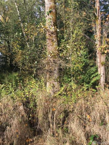 7205 Vandermark Rd E, Bonney Lake, WA 98391 (#1052667) :: Ben Kinney Real Estate Team