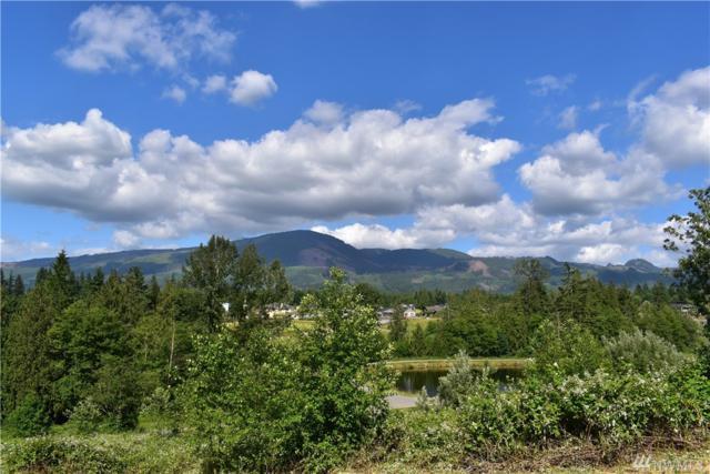 23786 Kamloop Ct, Mount Vernon, WA 98274 (#1059504) :: Kimberly Gartland Group