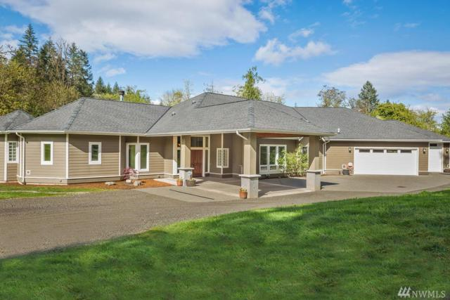 11321 28th St Ct NW, Gig Harbor, WA 98335 (#1066564) :: Ben Kinney Real Estate Team