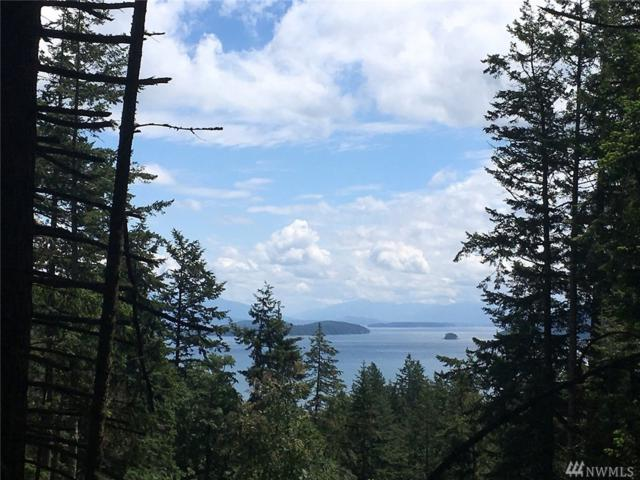 31-XX Roehl's Hill Rd, Orcas Island, WA 98279 (#1074152) :: Homes on the Sound