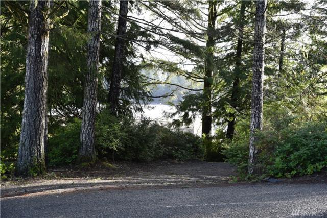 1305 E Benson Lake Dr, Grapeview, WA 98546 (#1079545) :: Ben Kinney Real Estate Team