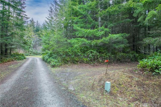 424 Skywater Dr, Port Hadlock, WA 98339 (#1081510) :: Homes on the Sound