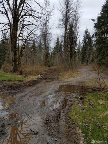 0 NE Moss Lake Road, Carnation, WA 98104 (#1084527) :: Ben Kinney Real Estate Team