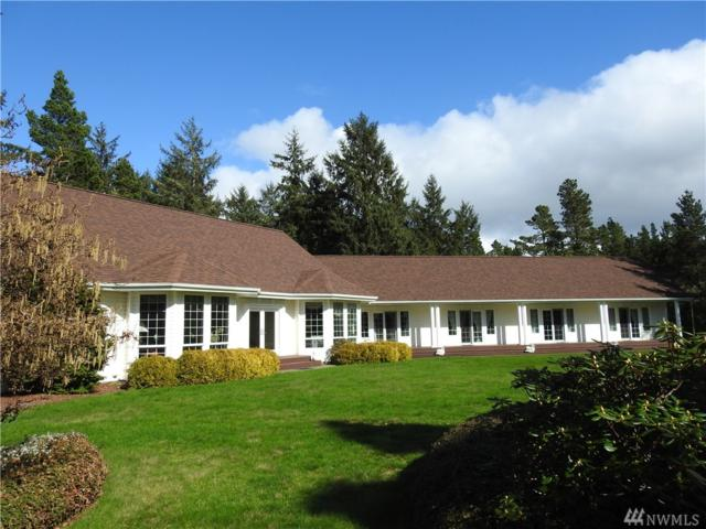 21914 Pacific Wy, Ocean Park, WA 98640 (#1090176) :: Ben Kinney Real Estate Team
