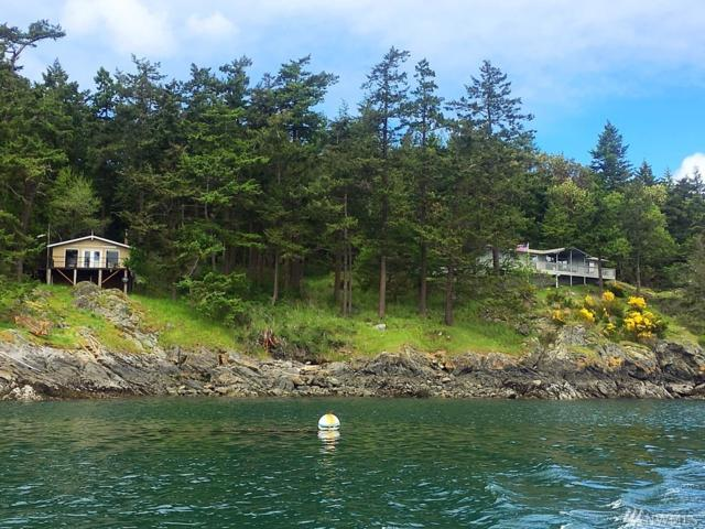 47-LOT Chinook Way, Center Island, WA 98221 (#1091298) :: Ben Kinney Real Estate Team