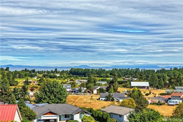 93 Lighthouse View Dr, Sequim, WA 98382 (#1094591) :: Ben Kinney Real Estate Team