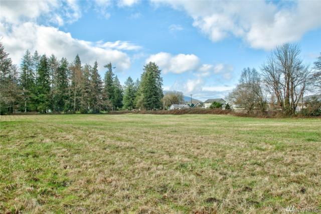 0-NHN Davis Lane, Lyman, WA 98263 (#1095879) :: Ben Kinney Real Estate Team