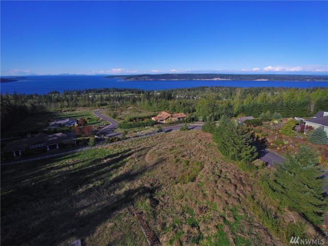 302 View Ridge Dr, Sequim, WA 98382 (#1097510) :: Ben Kinney Real Estate Team
