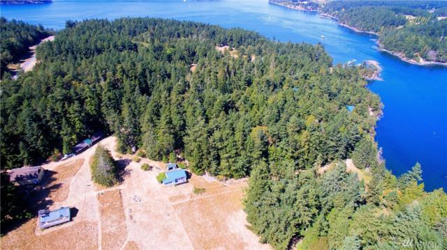 1065 Circle Rd, Crane Island, WA 98245 (#1100445) :: Ben Kinney Real Estate Team