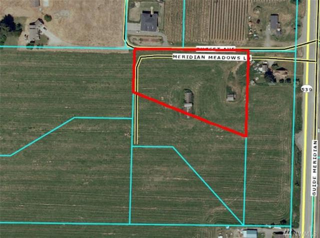 121 (Lot 2) Meridian Meadows Lane, Lynden, WA 98264 (#1101640) :: Ben Kinney Real Estate Team