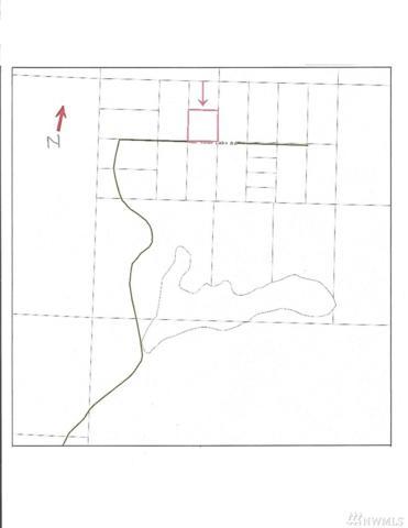 0 NE Shoe Lake Road, Tahuya, WA 98588 (#1103664) :: Ben Kinney Real Estate Team