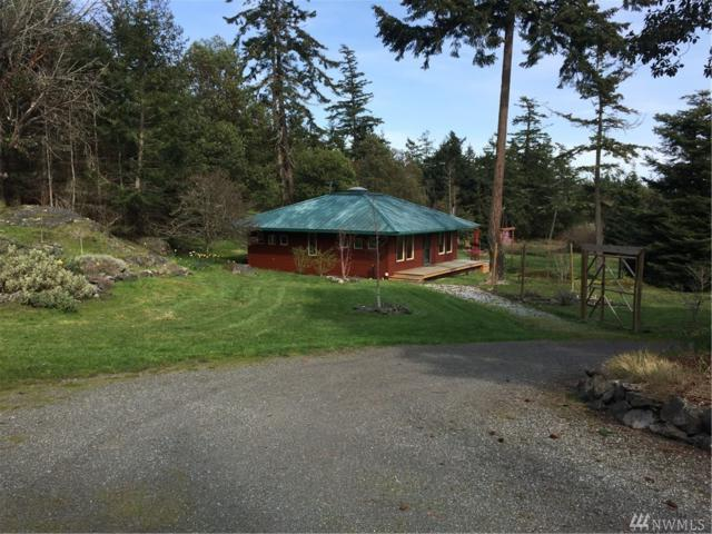 165 Curley Wy W, Friday Harbor, WA 98250 (#1106635) :: Ben Kinney Real Estate Team