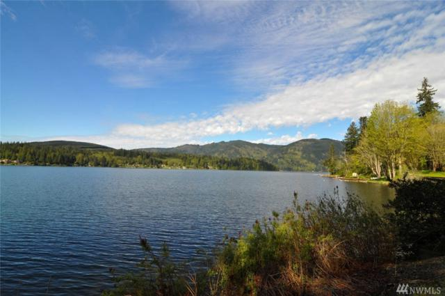 40-XX Blue Canyon Rd, Sedro Woolley, WA 98284 (#1112295) :: Homes on the Sound