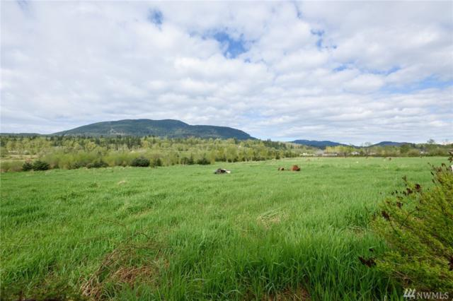 1180 Old Hwy 99 N Rd., Bellingham, WA 98229 (#1114505) :: Ben Kinney Real Estate Team