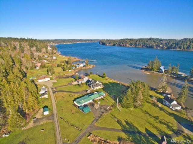 202 E Geist Meadows, Shelton, WA 98584 (#1116293) :: Ben Kinney Real Estate Team