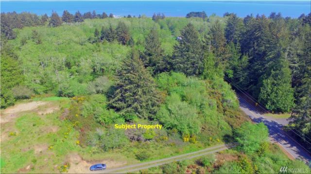 0 N On Oystervile Rd @ Cemetery Rd, Oysterville, WA 98641 (#1119719) :: Ben Kinney Real Estate Team