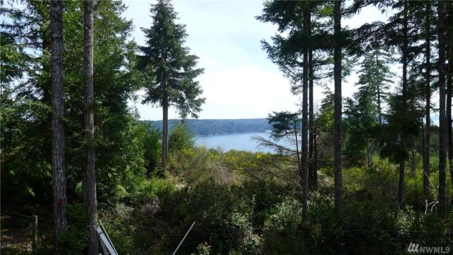 1683-M Colony Surf Dr, Lilliwaup, WA 98555 (#1119878) :: Ben Kinney Real Estate Team