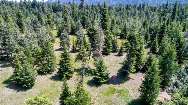 0-XXX Tree Haven Rd, Cle Elum, WA 98922 (#1123735) :: Ben Kinney Real Estate Team