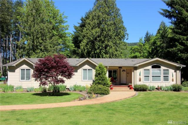 184 Naugle Rd, Mineral, WA 98355 (#1128359) :: Ben Kinney Real Estate Team