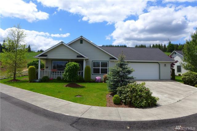 2804 Van Dyke Dr, Centralia, WA 98531 (#1129330) :: Ben Kinney Real Estate Team