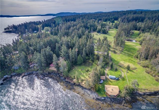 1744 San Juan Dr, Friday Harbor, WA 98250 (#1134857) :: Northern Key Team