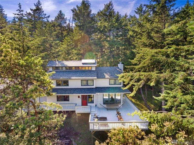 371 Upper Dr, Friday Harbor, WA 98250 (#1134899) :: Ben Kinney Real Estate Team
