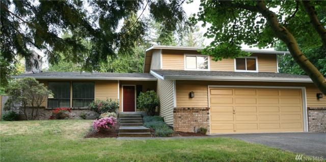 3017 247th Ave SE, Sammamish, WA 98075 (#1135366) :: Ben Kinney Real Estate Team