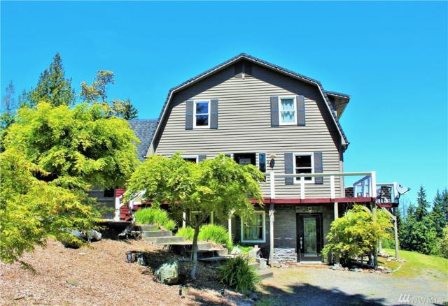 464 Striped Peak Rd, Port Angeles, WA 98363 (#1141049) :: Ben Kinney Real Estate Team