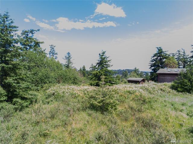 1120 Corona St, Port Townsend, WA 98368 (#1141470) :: Ben Kinney Real Estate Team