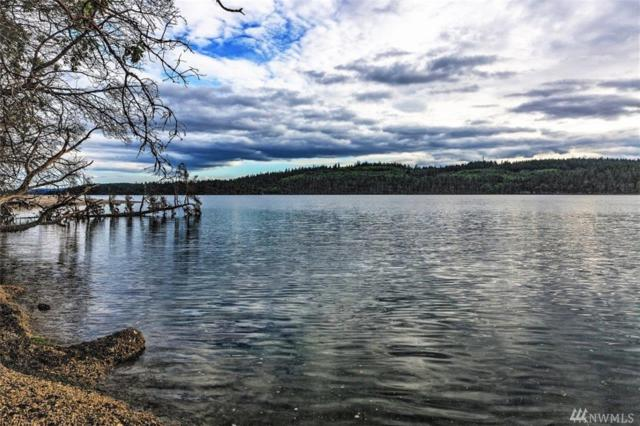 781 Griffith Point Rd, Nordland, WA 98358 (#1141803) :: Ben Kinney Real Estate Team