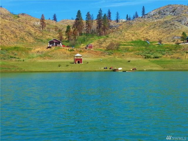30 Alkali Lake Rd, Riverside, WA 98849 (#1142954) :: Ben Kinney Real Estate Team