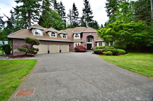 4208 127th St Ct NW, Gig Harbor, WA 98332 (#1143580) :: Ben Kinney Real Estate Team