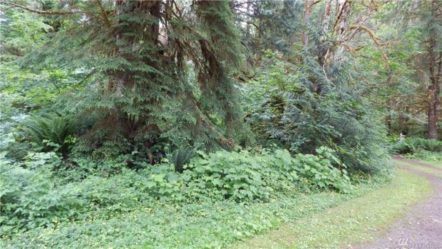 0 Beaver Place, Marblemount, WA 98267 (#1143820) :: Ben Kinney Real Estate Team
