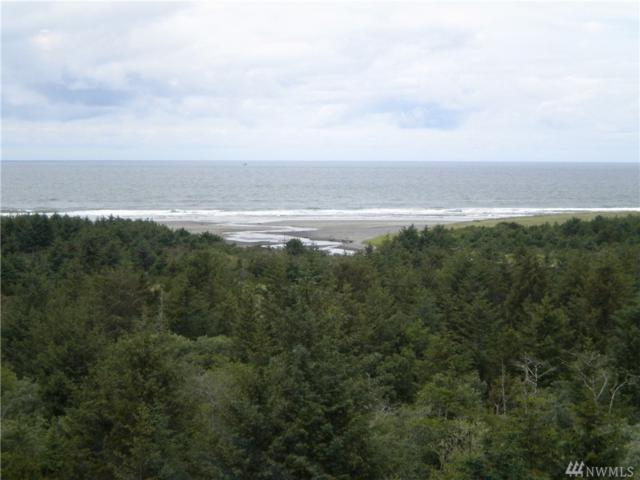 2815 Willows Rd #335, Seaview, WA 98644 (#1144033) :: Ben Kinney Real Estate Team