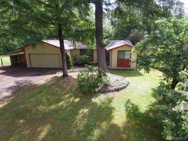 14117 103rd Ave Ct Nw, Gig Harbor, WA 98329 (#1144792) :: Ben Kinney Real Estate Team