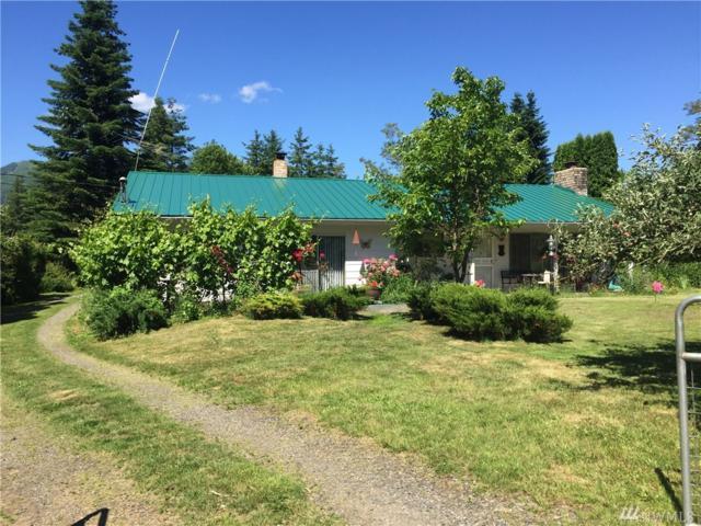 3993 Nelson Rd, Deming, WA 98244 (#1146125) :: Ben Kinney Real Estate Team