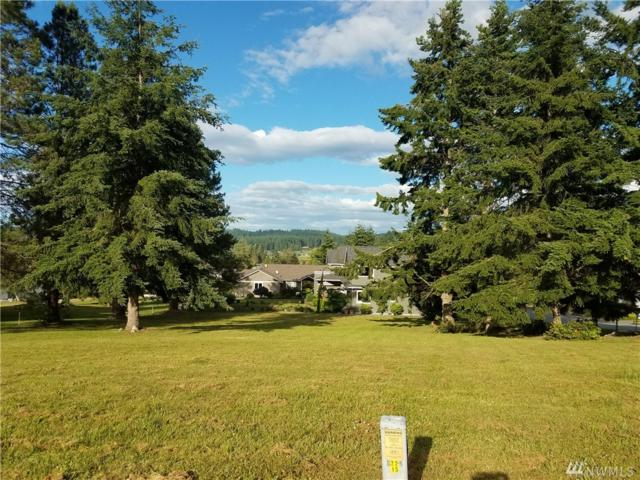 2405 Discovery Place, Langley, WA 98260 (#1147542) :: Homes on the Sound
