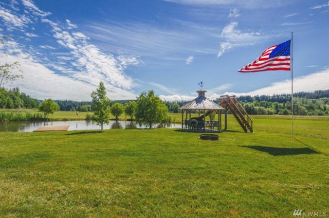1164 Pleasant Valley Rd, Chehalis, WA 98532 (#1148829) :: Ben Kinney Real Estate Team
